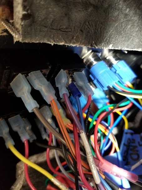 Buttons wired. View of harnesses at back of buttons.jpg